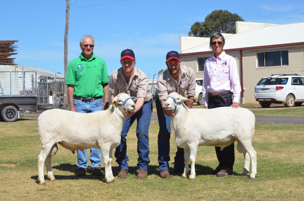Malcom and Kerrie Plum, Kalnari Austalian Whites, Tarcutta, with Lachlan and Brayden Gilmore, Baringa Australian Whites, Oberon (centre), and the two rams the Plums purchased at the sale.